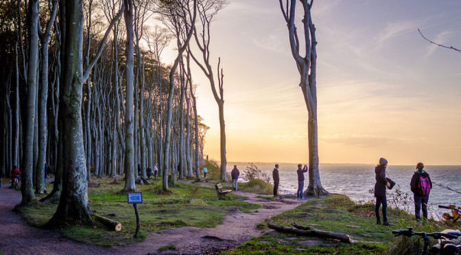 Gespensterwald – Nienhagen